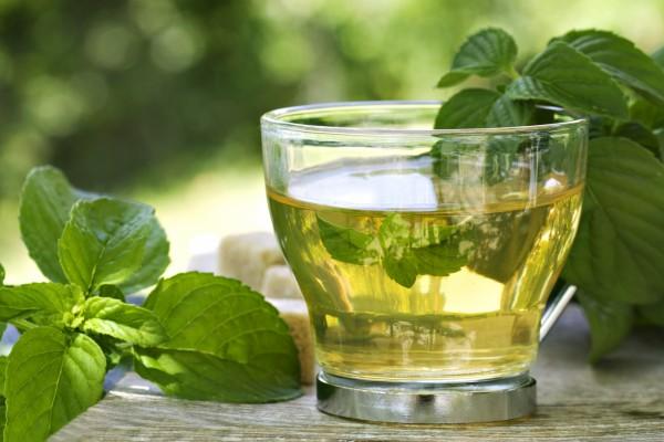 Para que sirve el té verde: Propiedades más comunes
