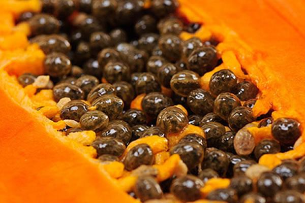 ¿Para que sirven las semillas de papaya?. Beneficios y propiedades