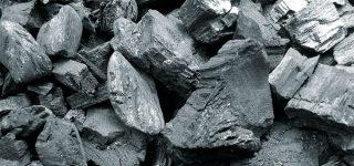 Para qué sirve el carbón vegetal?