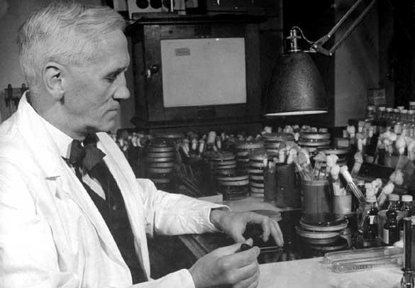¿Para qué sirve la penicilina? Usos y orígen