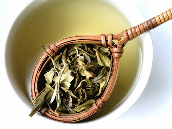 ¿Para que sirve el té blanco en nuestra salud?