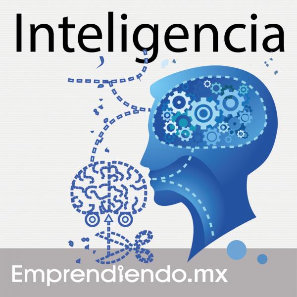 Para qué sirve la inteligencia lingüística?