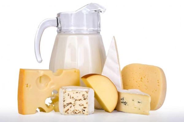 ¿Para que sirven los lácteos?