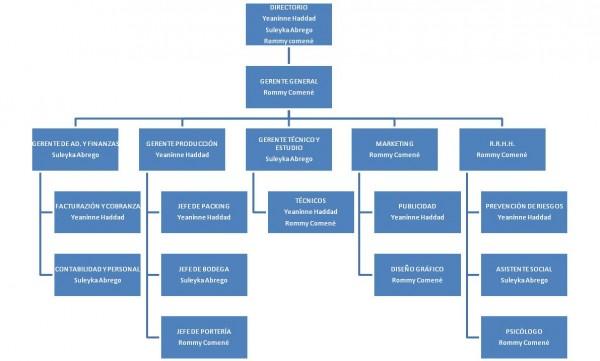 Para qu sirve y qu es un organigrama for Organizacion de viveros