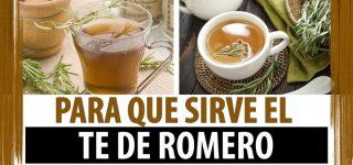 Para qué sirve el Romero, Usos Medicinales