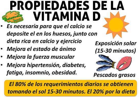 vitamina-d-propiedades-alimentos
