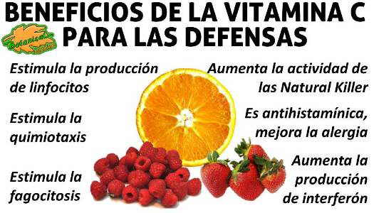 vitaminac-defensas-aumenta