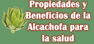 Para qué sirve la alcachofa